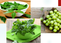 Uses & Health Benefits of Amla, Tulsi and Neem for Skin, Hair and Body Health; Best Ayurvedic Remedies