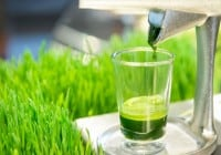 Discover Amazing Benefits of Wheatgrass Juice