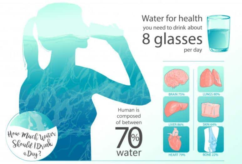 8 glasses of water every day