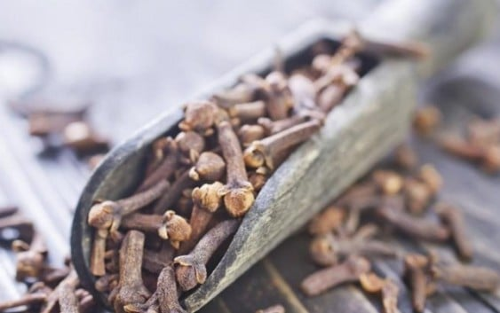 Magical Benefits of Cloves for You