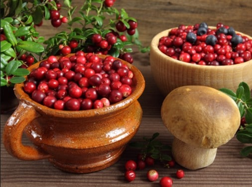 healthy cranberry benefits for all