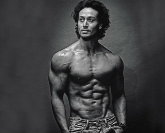tiger shroff bollywood hunk and hulk