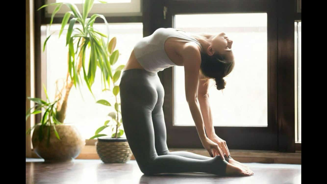 stretching and yoga exercises for back pain