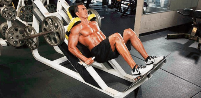 hack squats position