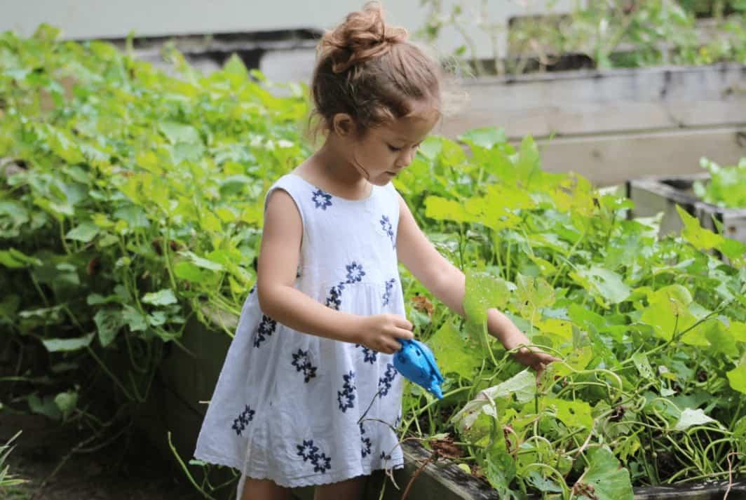 Gardening makes you responsible