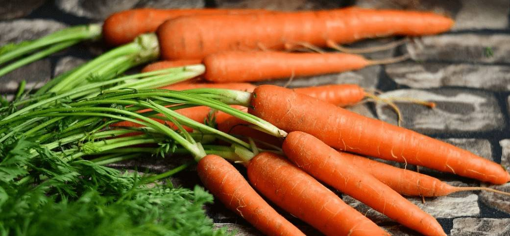carrot for liver healthy