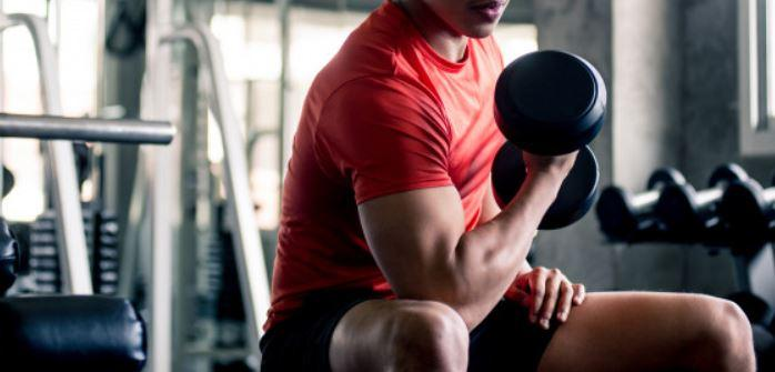 Concentration Curls for bigger biceps