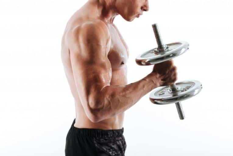 hammer curl biceps workout