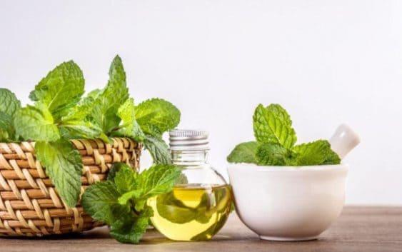 herbal ayurvedic oil