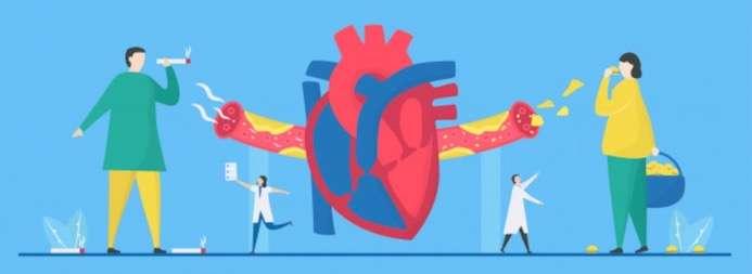 HDL heart health