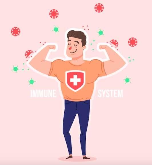 best immunity booster supplements