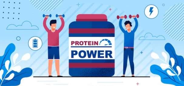 men workout protein diet plan