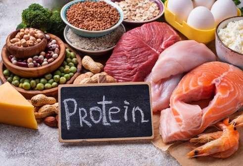 protein diet plan weight gain