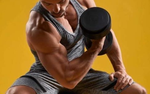 10 Best Whey Protein Powder for Men, Workout Protein Diet