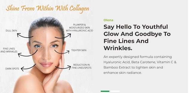 Olena Plant Based best Collagen powder for skin
