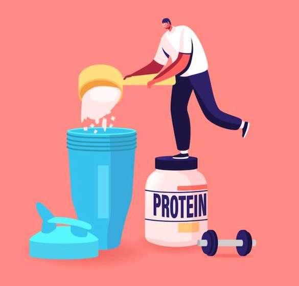 Workout protein diet