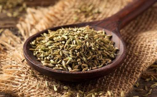 healthy fennel seeds